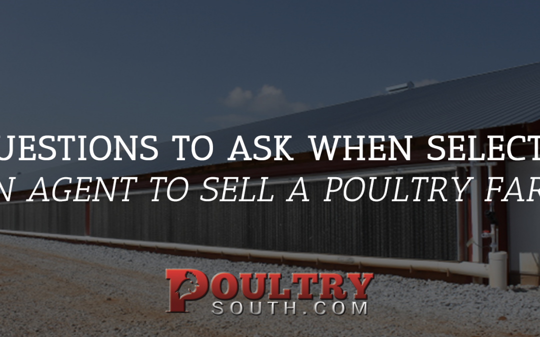 7 Questions to Consider When Selecting an Agent to Sell a Poultry Farm
