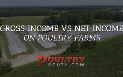 Gross Income vs. Net Income on Poultry Farms