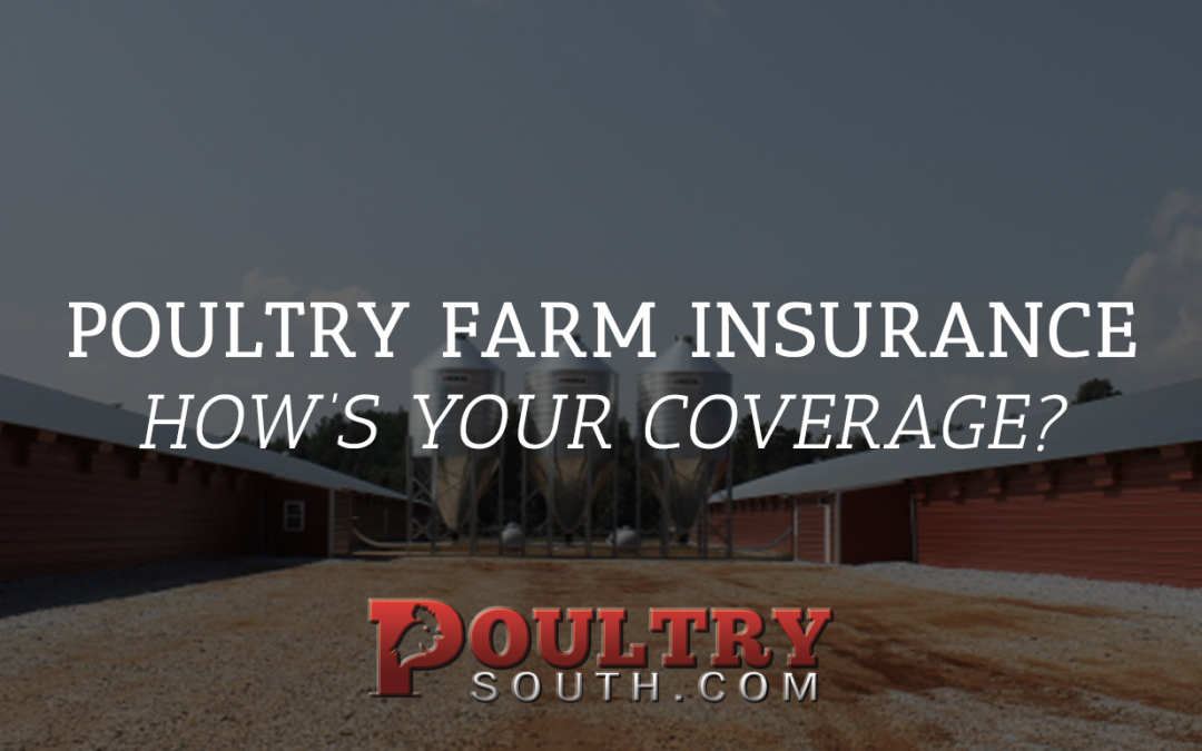 Poultry Farm Insurance – How's Your Coverage?