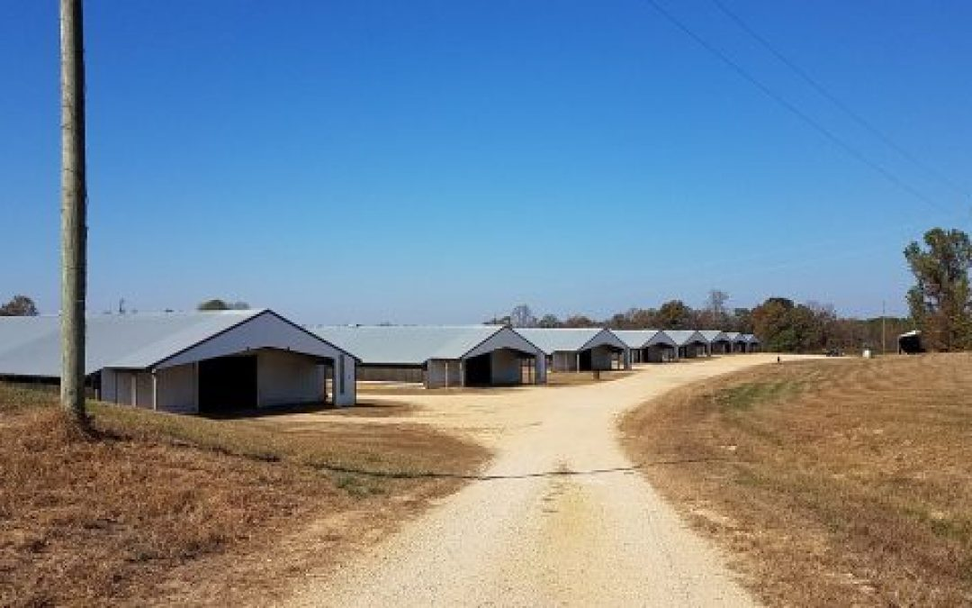 SOLD!! 8 House Broiler Farm in Marion County, AL