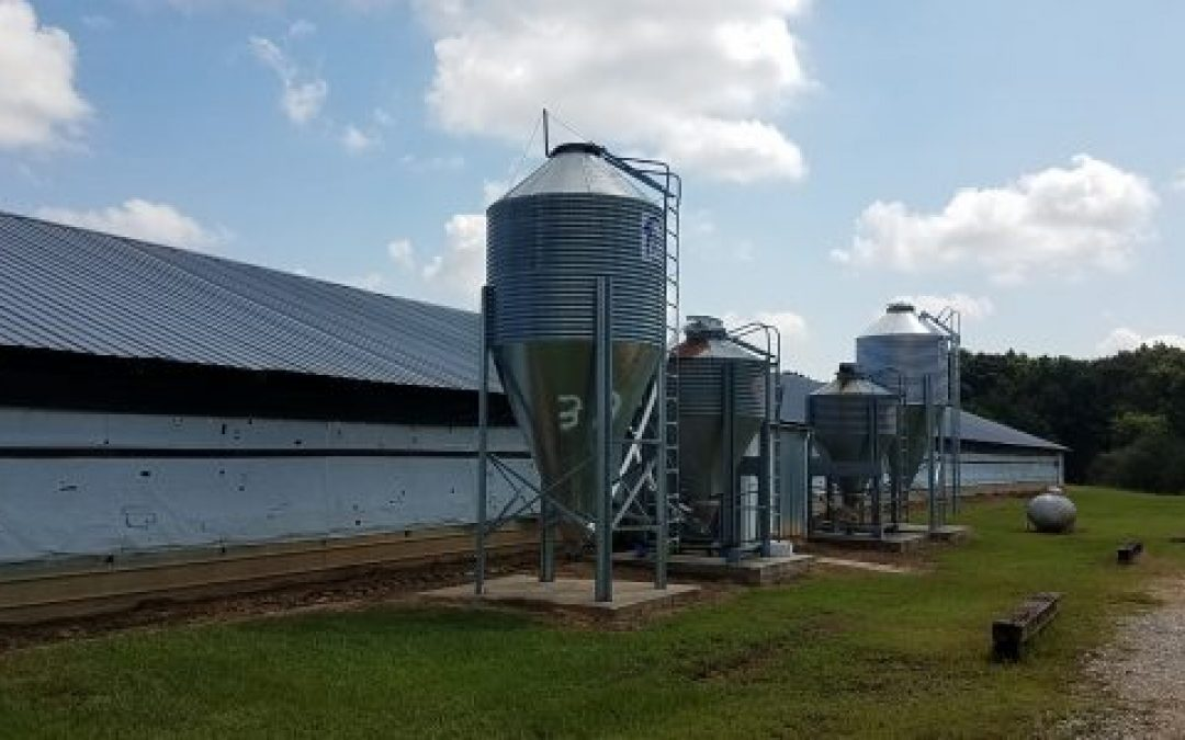 SOLD!! Tolleson Poultry – 3 House Pullet Farm in Leake County, MS