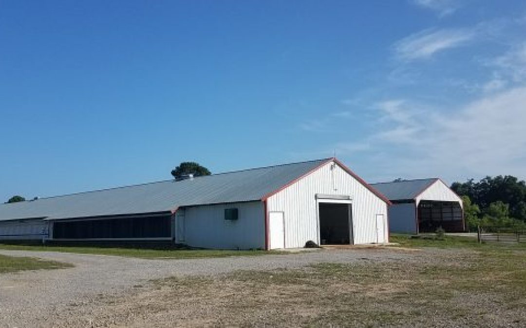 SOLD!! Diamond S Farm – Two House Breeder Farm in Winston County, AL