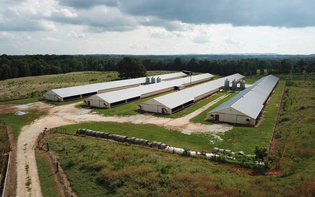 Thomas Poultry – 4 House Broiler Farm in Cleburne County, AL