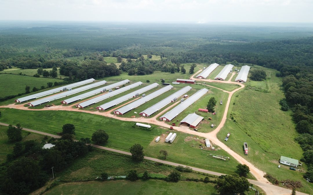 11 House Broiler Poultry Farm For Sale Butler County, AL