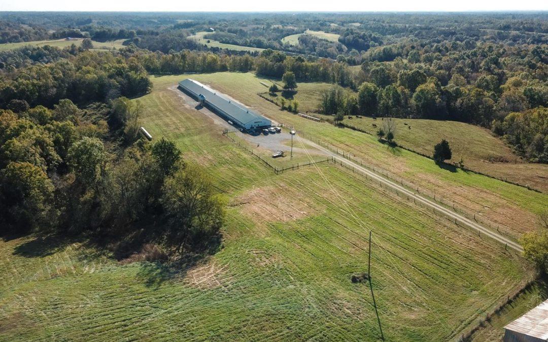 Fairfield Farm-Organic Free Range Egg Farm in Washington County Kentucky