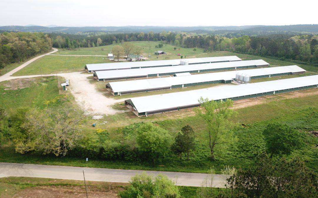 REDUCED!!! Rock House Farm-Four Mega House Farm