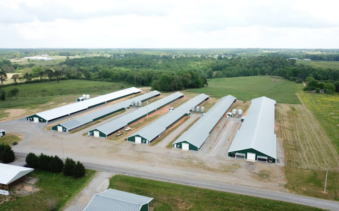 6 House Broiler Poultry Farm with 31+/- Acres in Cullman County
