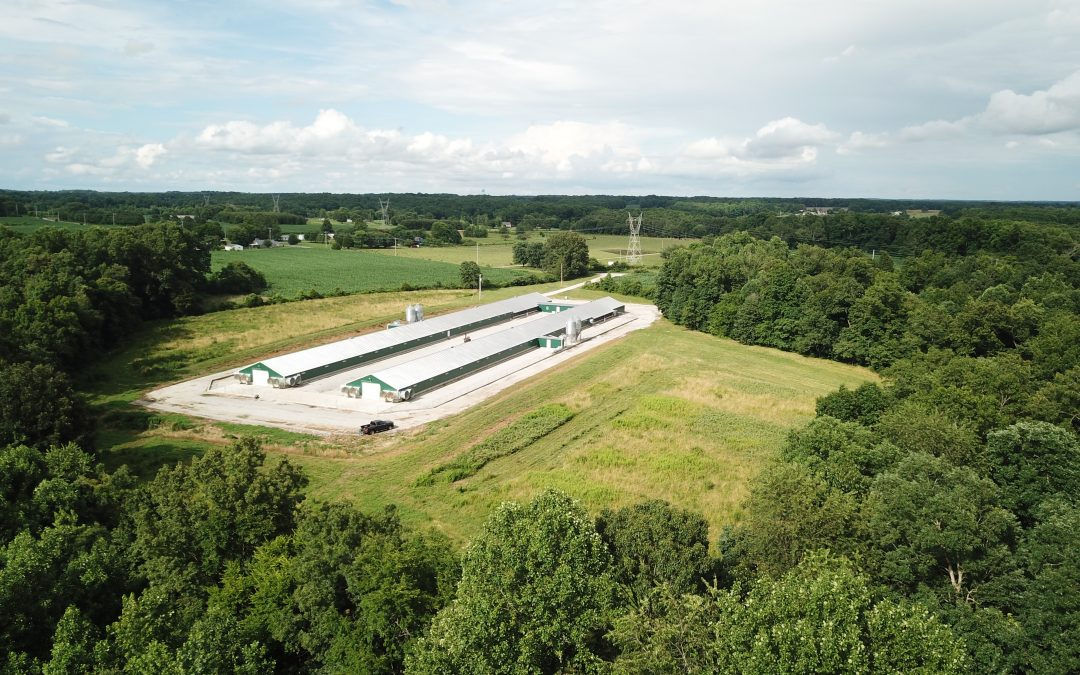 SOLD! – G&K Farm-Aviagen Breeder Hen Farm in Leoma, TN