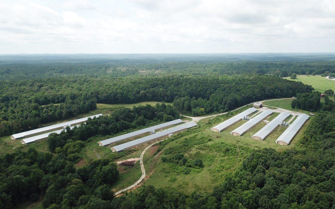 Oliver Farm-Broiler and Cattle Farm in Tallapoosa County, AL