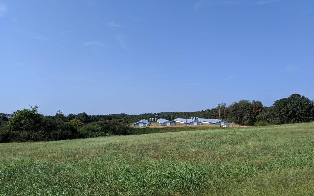 Wiginton Farm- Broiler Farm with 120+/- acres in Marion County, AL