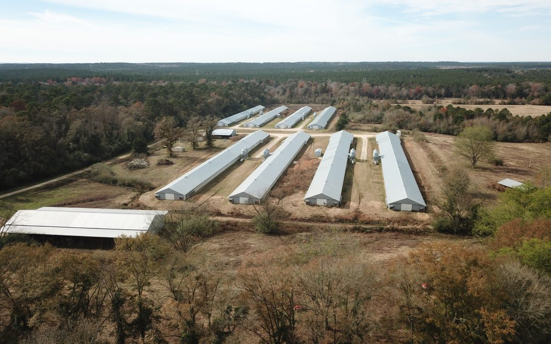 PRICE REDUCED!! Wildfork Farm-8 House Broiler Farm in Butler County, AL