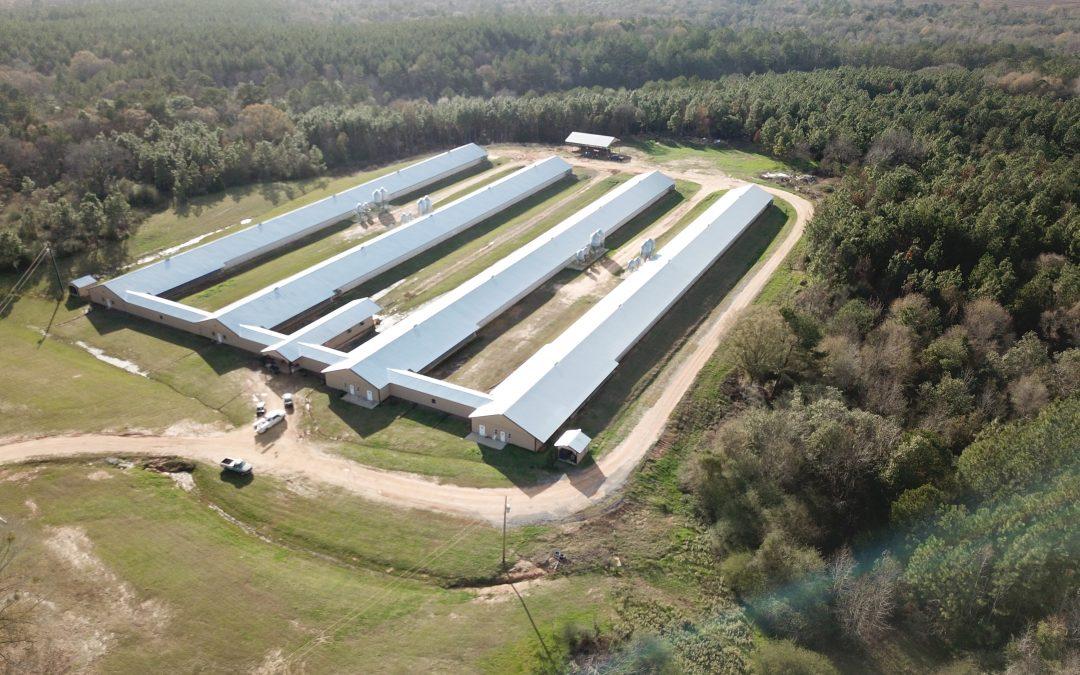 Triple B Farm-4 House Breeder Hen Farm in Covington County, AL